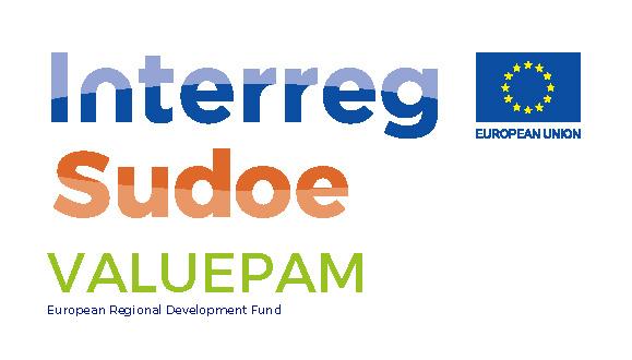 Logo proyecto ValuePAM